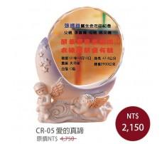 CR-05 彩印水晶獎盃
