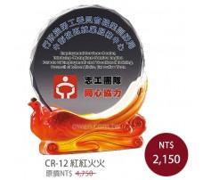 CR-12 彩印水晶獎盃