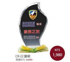 CR-22 彩印水晶獎盃