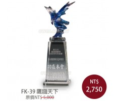 FK-39 鷹臨天下