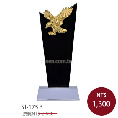 SJ-175B 水晶獎牌