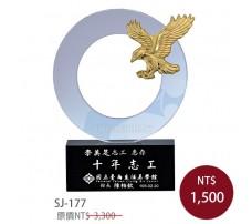 SJ-177水晶獎牌