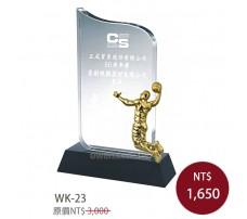 WK-23優越+金屬籃球