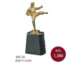 WK-30金屬獎盃 跆拳道
